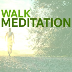 Album: Walk Meditation Relaxing Songs to Use as Background