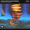 Shaun Frank & Hunter Siegel - Shapes (feat. Roshin) artwork