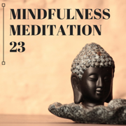 Mindfulness Meditation 23 - Sounds for Contemplative Practices Against Stress and Anti Anxiety Music - Natural Warmer - Natural Warmer