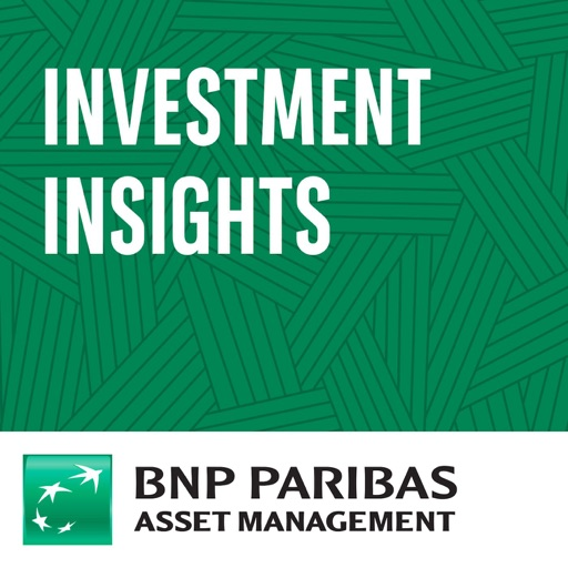 Cover image of Investment Insights