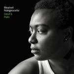 Meshell Ndegeocello - Die Young