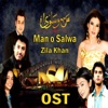 Tere Ishq Mein From Man O Salwa Single