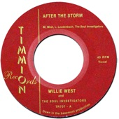 After the Storm - Single