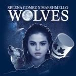 songs like Wolves