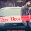 Tere Bina (feat. Akhil) - Single