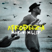 Marcus Miller - Papa Was a Rolling Stone