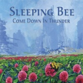 Sleeping Bee - Mighty Rain