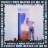 Heaven Let Me In - Friendly Fires mp3