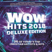 WOW Hits 2018 (Deluxe Edition)-Various Artists