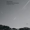 Chris Potter & Underground Orchestra - Imaginary Cities artwork