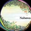 Nabowa ジャケット写真