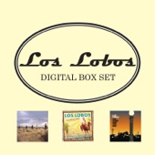 Los Lobos - The Road To Gila Bend