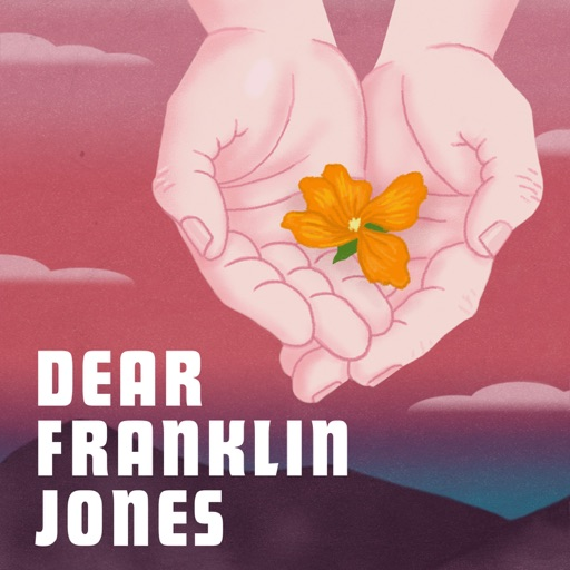 Cover image of Dear Franklin Jones