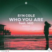 Who You Are (feat. MIO) [VIP Mix] - Syn Cole