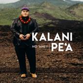 Kalani Pe'a - Hilo March