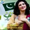 Aye Watan Pyare Watan Single