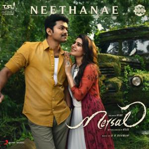 "A. R. Rahman, Shreya Ghoshal, Vijay, Samantha Ruth Prabhu, Kajal Aggarwal & Nithya Menen - Neethanae (From ""Mersal"")"