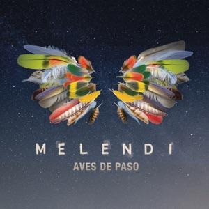 Aves de Paso - Single Mp3 Download