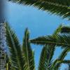 Felix Cartal - Mood (Steff Da Campo Remix) artwork