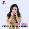 Cita Citata - Potong Bebek Jomblo artwork