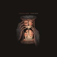 Chelsea Grin - Dead Rose artwork