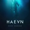 HAEVN - Fortitude artwork