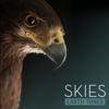 Разные артисты - Earth Tones: Skies обложка