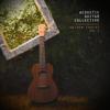 Acoustic Guitar Collective - Fields of Gold Grafik