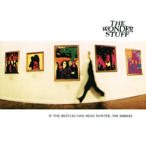 If the Beatles Had Read Hunter... The Singles