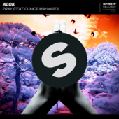 Pray (feat. Conor Maynard) - Alok