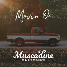 Image result for muscadine bloodline movin on