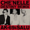 Destiny (Remix) [feat. AK-69 & Salu] - Single ジャケット写真