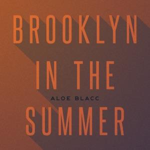 Brooklyn In the Summer - Single