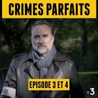 Télécharger Crimes Parfaits, Saison 2 - Antoine Duléry Episode 1