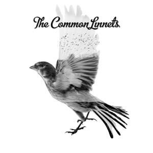 The Common Linnets - Calm After the Storm - Line Dance Music