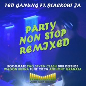 Ted Ganung - Party Non Stop (Wagon Burna Remix)