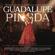 Yolanda (Te Amo) [feat. Pablo Milanés] - Guadalupe Pineda