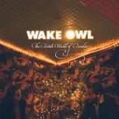 Wake Owl - Days In the Sea