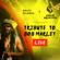 Ralfs Eilands & Reggae Orchestra - Tribute to Bob Marley (Live)