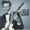 Chuck Berry - You Never Can Tell (1964 Single Version) kunstwerk