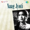 Sun Chand Meri Yeh Dastaan From Naag Jyoti Single
