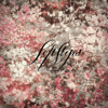 Soft Steps - EP - Lights Dim & Endless Melancholy
