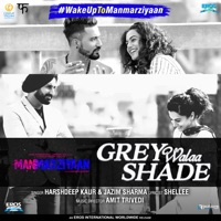 MANMARZIYAAN - Grey Walaa Shade Chords and Lyrics