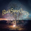 18) Black Stone Cherry - Family Tree