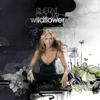 Sheryl Crow - Perfect Lie portada