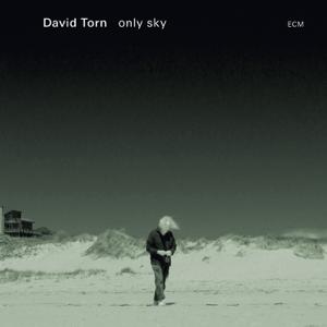 David Torn - Only Sky