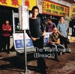 The Wallflowers - Some Flowers Bloom Dead