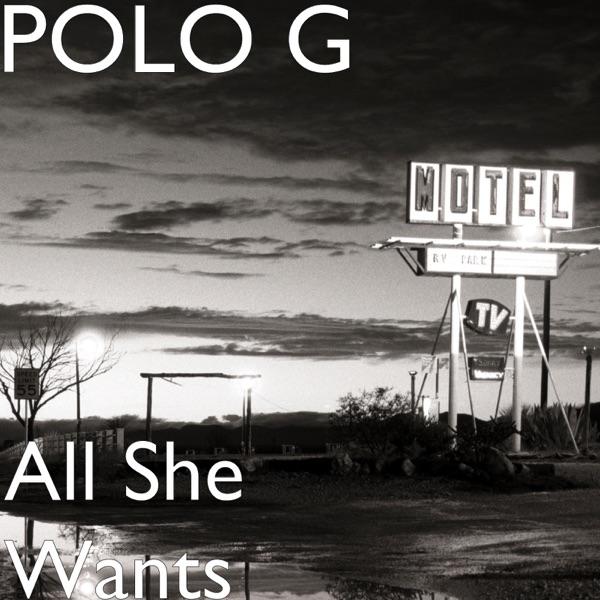 All She Wants - Single