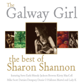 The Galway Girl (feat. Mundy)