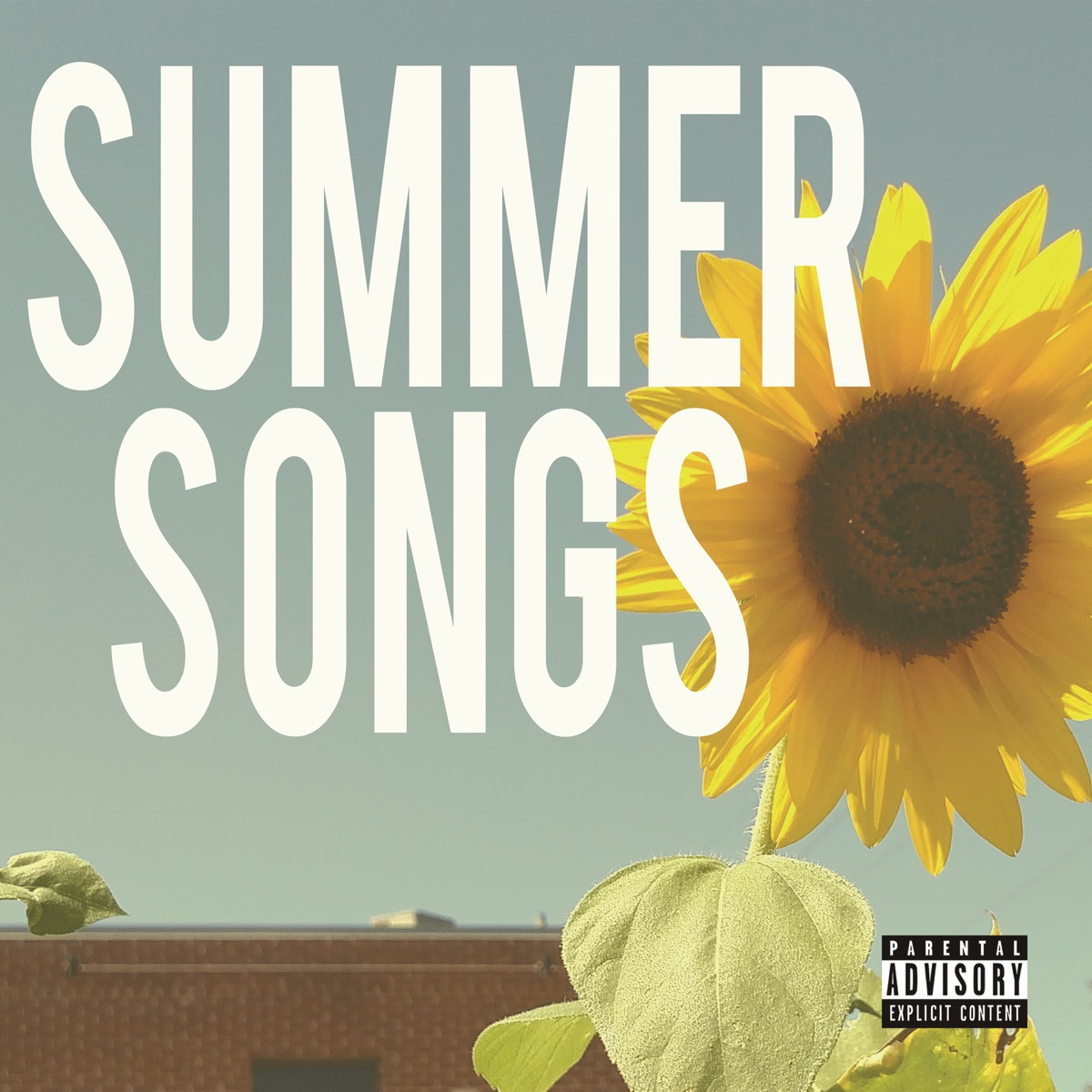 Album or cover summer hits